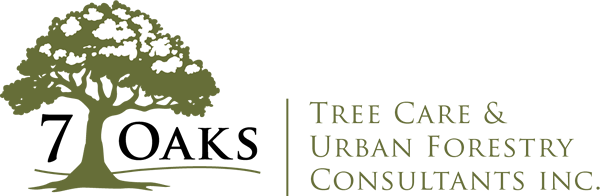 7 Oaks Tree Care Logo
